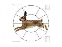 Мишень Русак для пристрелки дробовых ружей 80х80 см 16-дольная