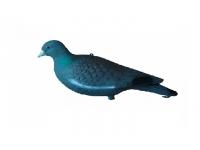 Чучело голубя