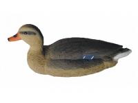 Чучело кряквы плавающей большое (утка)