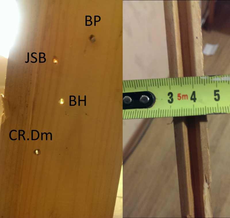 6)Crosman Vantage NP(R8-30020). Тест на убойность на примере 4 видов пуль.