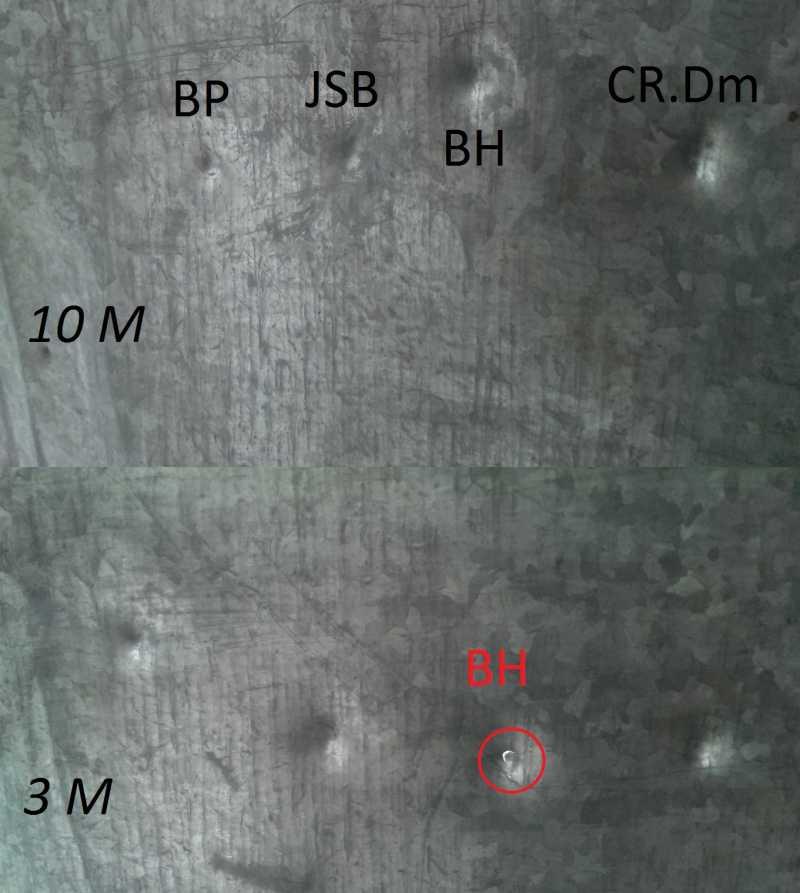 8)Crosman Vantage NP(R8-30020). Тест на убойность на примере 4 видов пуль.