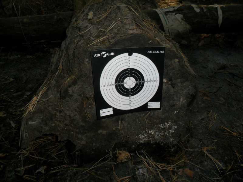 2)Стрельба из пистолета Swiss Arms SIG X-FIVE