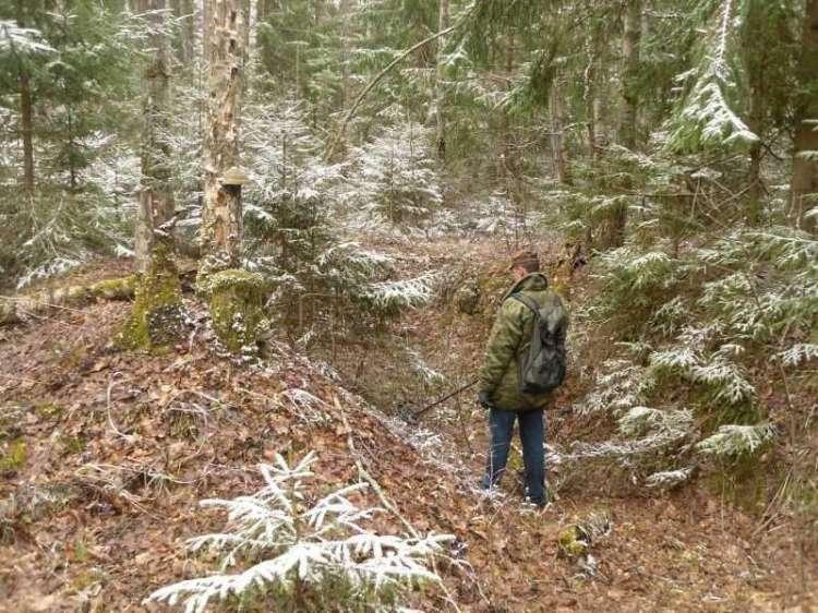 18)Воскресенье в Брянском лесу