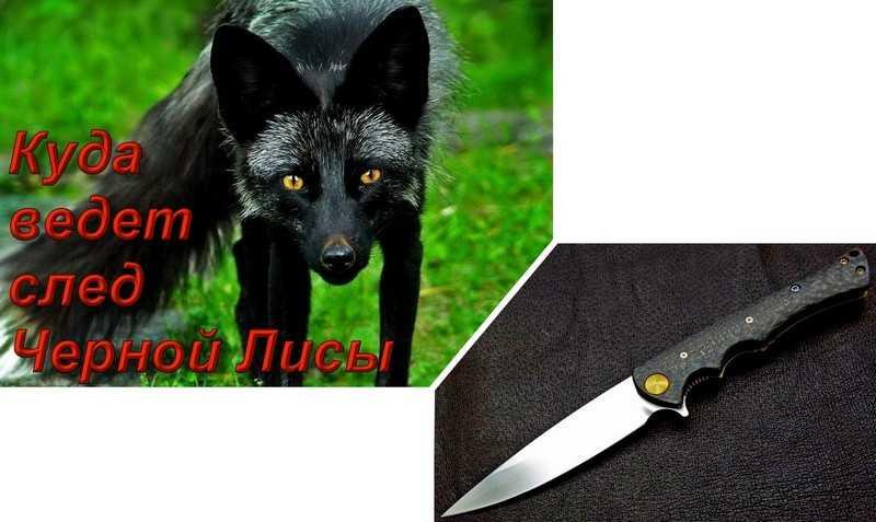 1)Куда ведет след Черной Лисы. Нож SteelСlaw Черная Лиса.