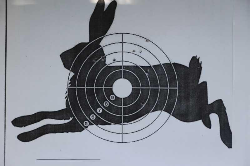 10)Маузер М 712 от Gletcher: первые впечатления от стрельбы и своеобразие модели.