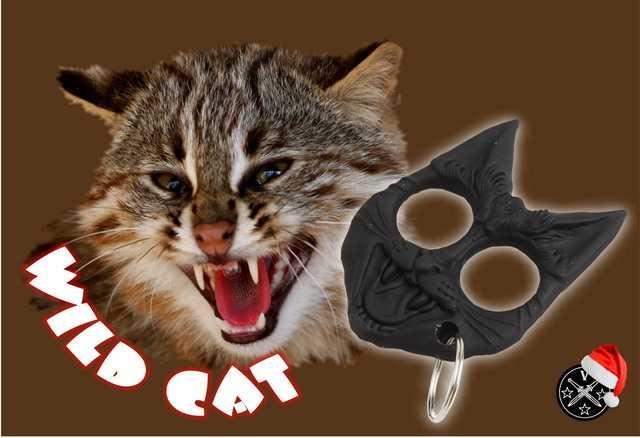 1)Эволюция «Дикого кота»