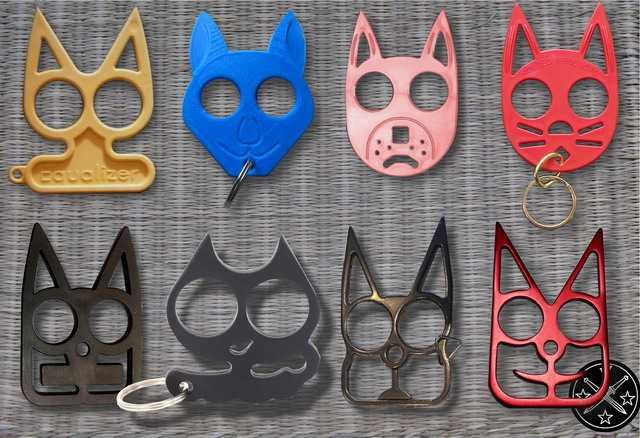 8)Эволюция «Дикого кота»