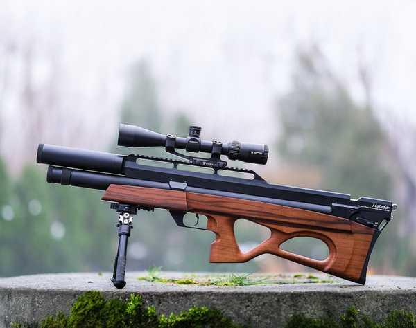 Виды пневматических винтовок
