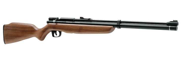 13)Муки выбора пневматической винтовки