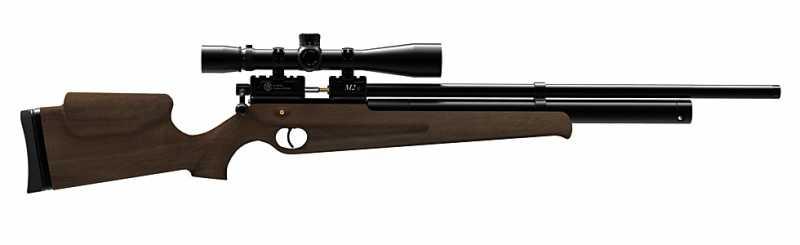 21)Муки выбора пневматической винтовки