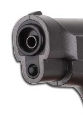 12)Swiss Arms P84