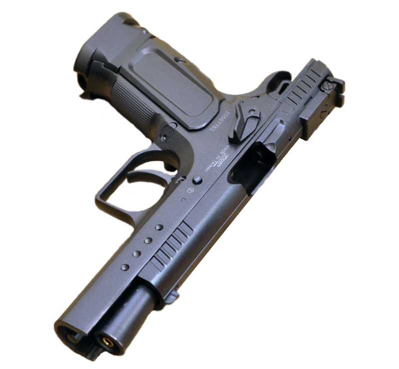 2)Swiss Arms Tanfoglio Limited Custom