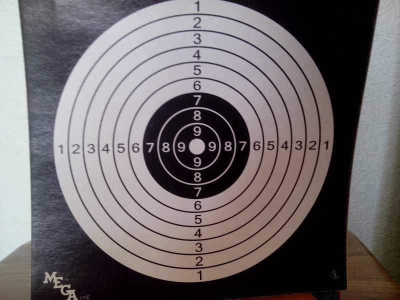 5)Стрельба с ASG Dan Wesson 6