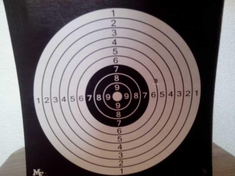 6)Стрельба с ASG Dan Wesson 6