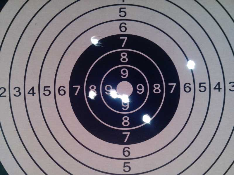 12)Стрельба с ASG Dan Wesson 6